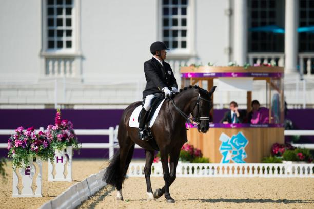 Man on horse riding in a stadium
