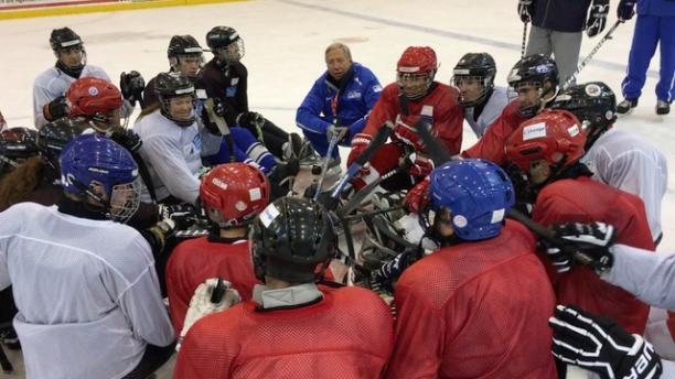 Para ice hockey - development