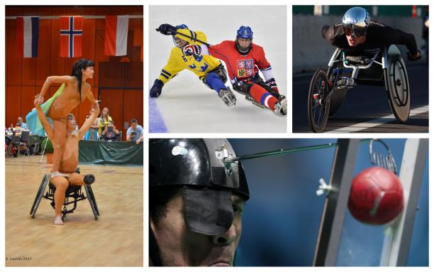 Para dance sport couple, wheelchair athlete, boccia player and Para ice hockey players compete at their sport