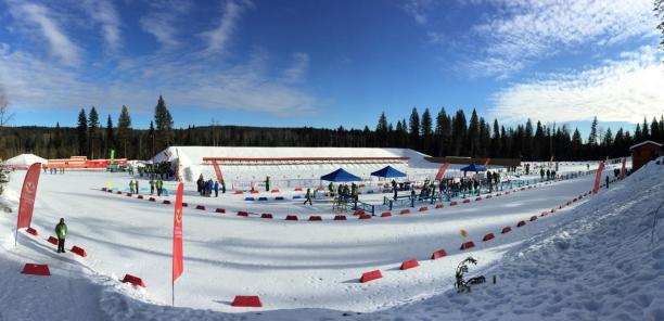 a wide shot of a Nordic skiing course in the sunshine
