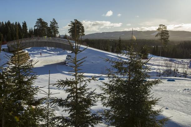 A cross-country skiing course full of snow