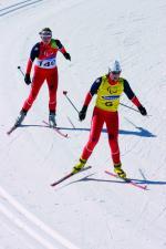 TORINO 2006 - Cross-Country Skiing