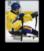 Novi Sad 2012 IPC Ice Sledge Hockey B Pool World Championships - Media Centre Icon