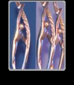 Cup Awards