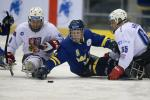 Per Kasperi at the 2013 IPC Ice Sledge Hockey World Championships
