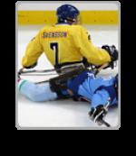 Hockey Sweden Italy website icon