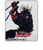 Hockey USA website icon