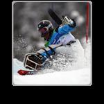 2013/14 Alpine icon