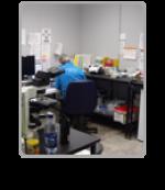 Testing Statistics Block Picture