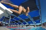 Swimmer jumping from the block into the water