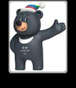 PyeongChang 2018 Paralympic Mascot Bandabi - icon