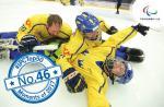Para ice hockey players celebrate on the ice