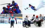 winter athletes competing at their sports