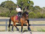 female Para equestrian rider Emma Booth