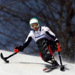 Athlete practicing alpine skiing in a sit-ski.
