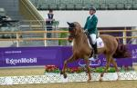 male Para equestrian rider Rodolpho Riskalla on his horse