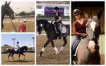 female Para equestrian rider Bert Sheffield on her horse