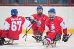 Czech show of strength at Slovakia Cup