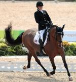 Equestrian sports icon
