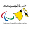 Paralympic Council of Brunei Darussalam Icon